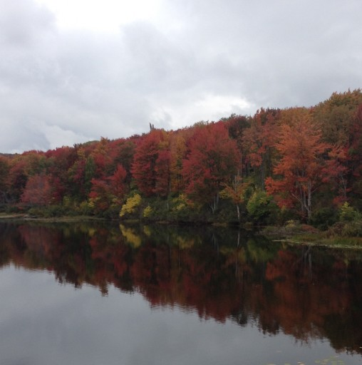 Chestnut Lake Camp - Beautiful Fall Picture; Premier Summer Camp Near New York City