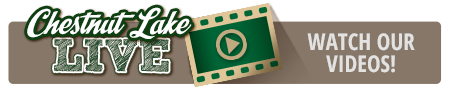 Chestnut Lake Live - Watch Our Summer Camp Videos